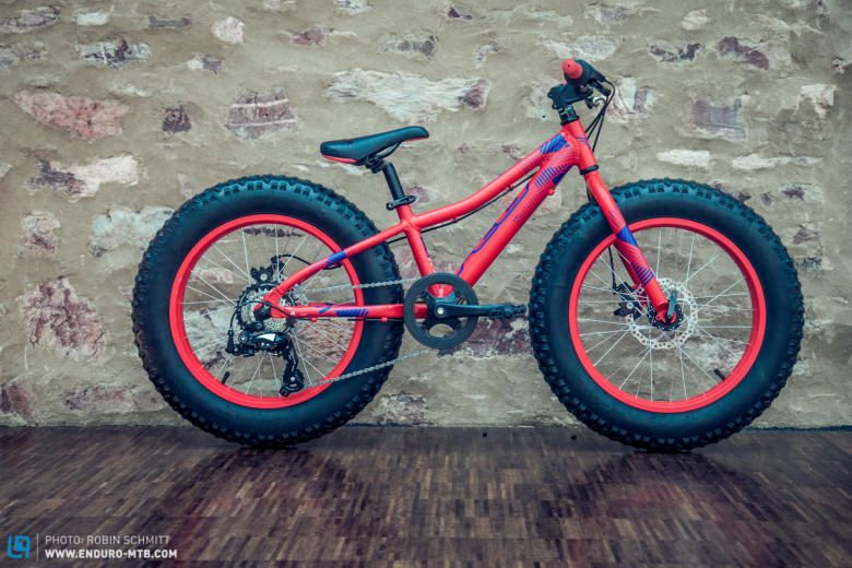 Fatbike Minifatbike Kids Fat Bike Kids Pinterest Bicycling