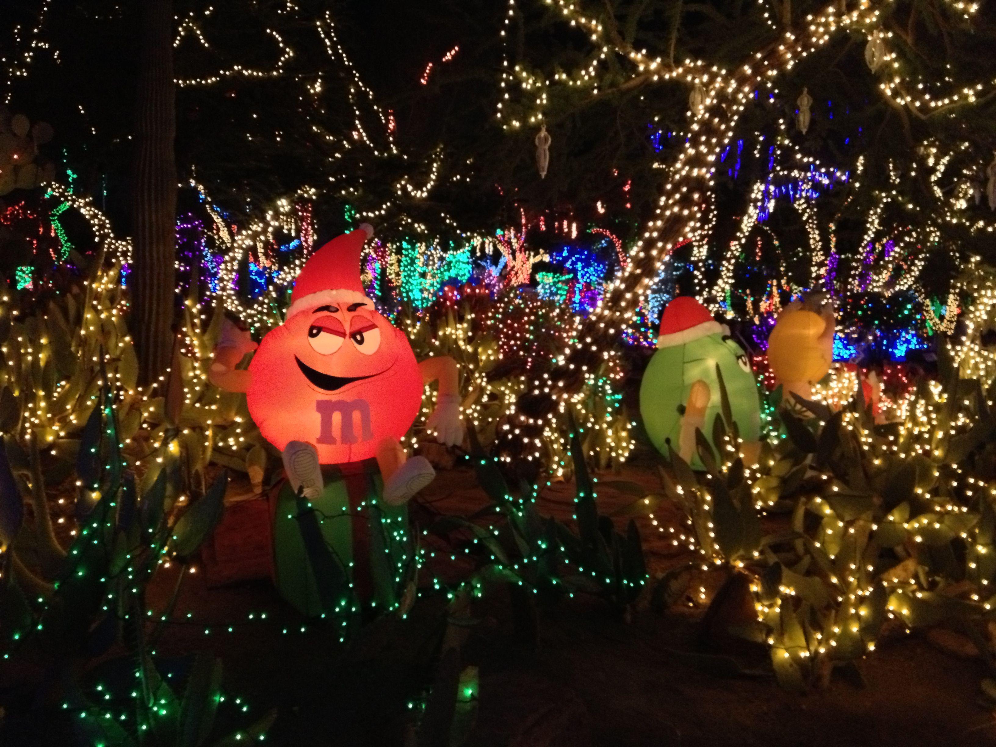 Ethel M's Cactus Garden, Henderson, NV Christmas lights