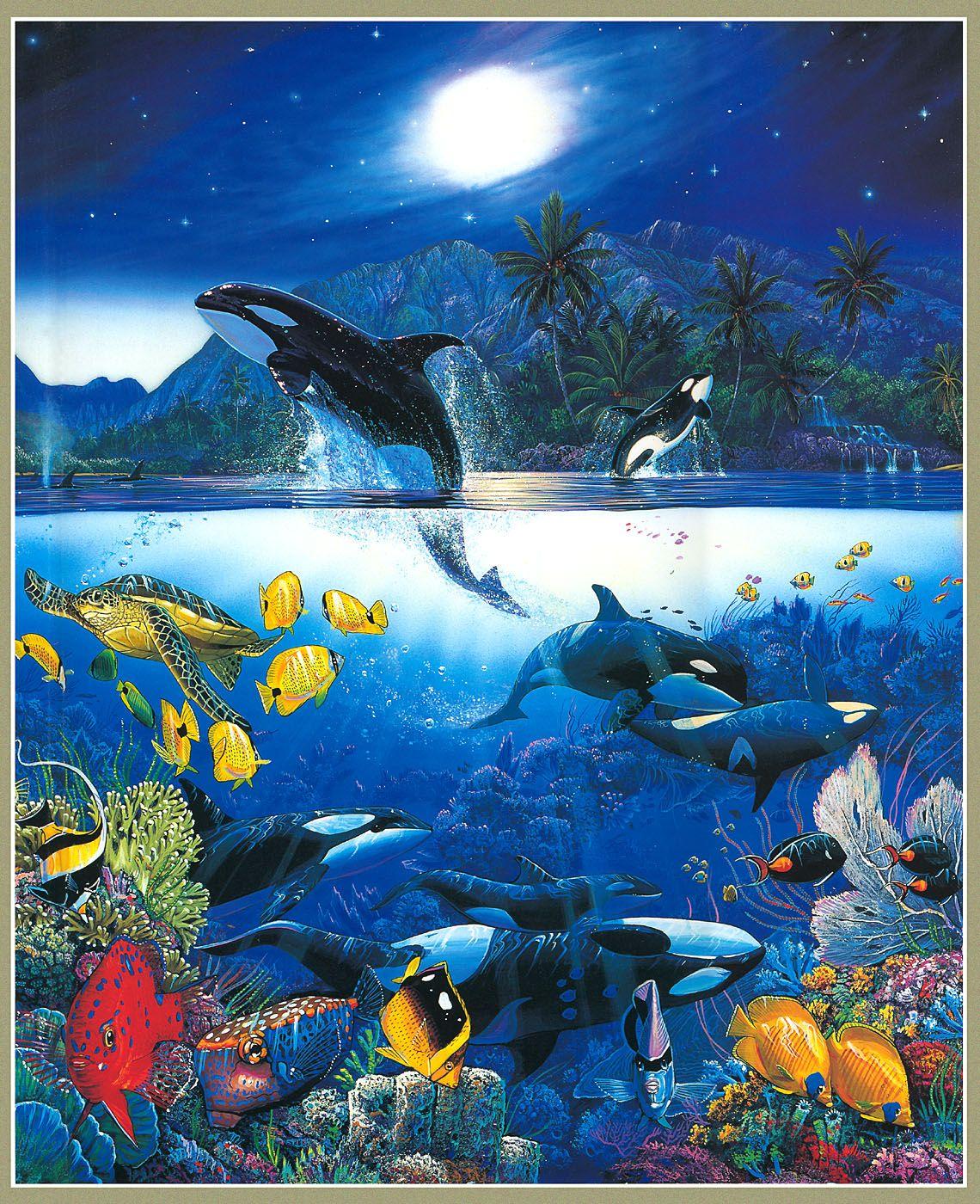 Картинки анимации морские обитатели