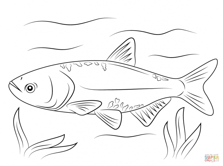 Free Coloring Pages In Carp On Hook Coloring Pages
