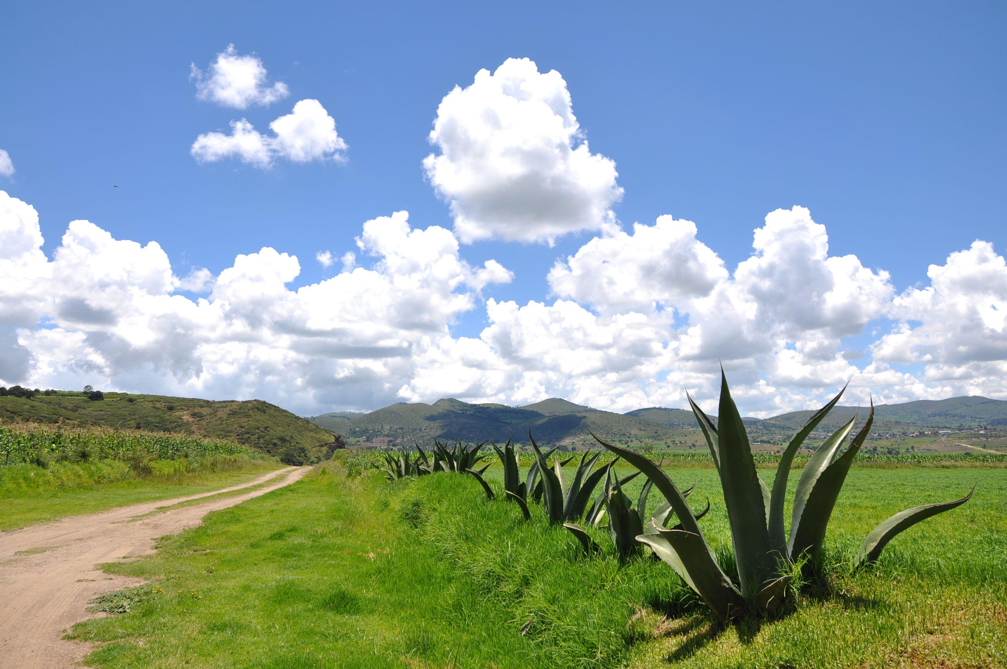 Tecoaque, Tlaxcala