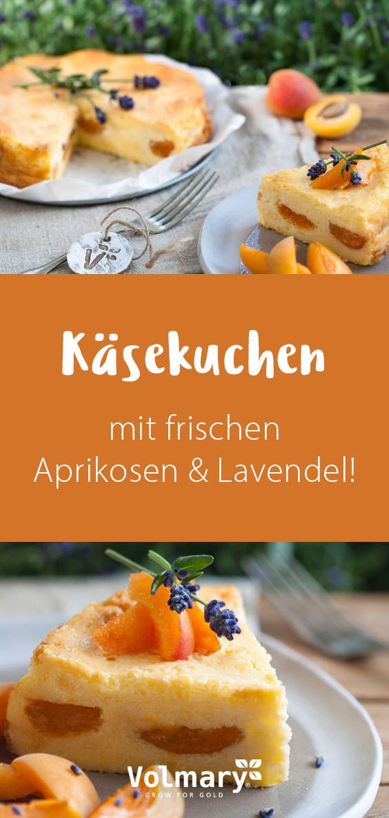 Aprikosen-Lavendel-Käsekuchen - Plant Happy®