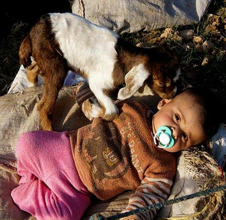Iranian nomadic baby