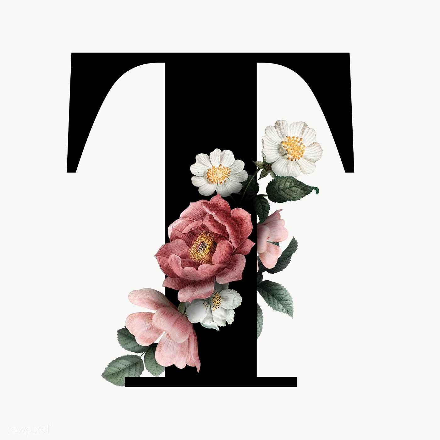 Classic And Elegant Floral Alphabet Font Letter T Transparent Png Free Image By Rawpixel Com Fonts Alphabet Lettering Fonts Lettering Alphabet Fonts