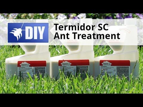 Did You Know That Termidor Sc Can Also Be Used For Ant Control Using Termidor For Ants Is A Good Choice Because No Termite Control Termite Problem Ant Control