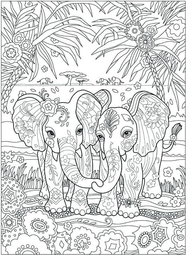 elephant coloring pages for adults to print  elephant