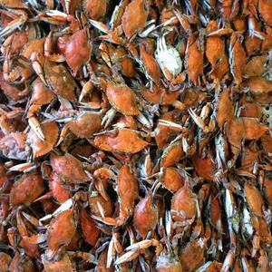 Blue Crabs At The Maine Avenue Fish Market Get Then By The Dozen And Enjoy Then By The Waterfront Washington Dc Outdoor Market Southwest Washington Maine