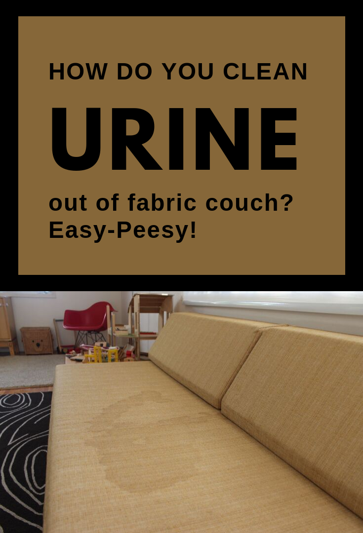 How Do You Clean Urine Out Of Fabric Couch Easy Peeasy Topcleaningtips Com Couch Fabric How Do You Clean Clean Fabric Couch