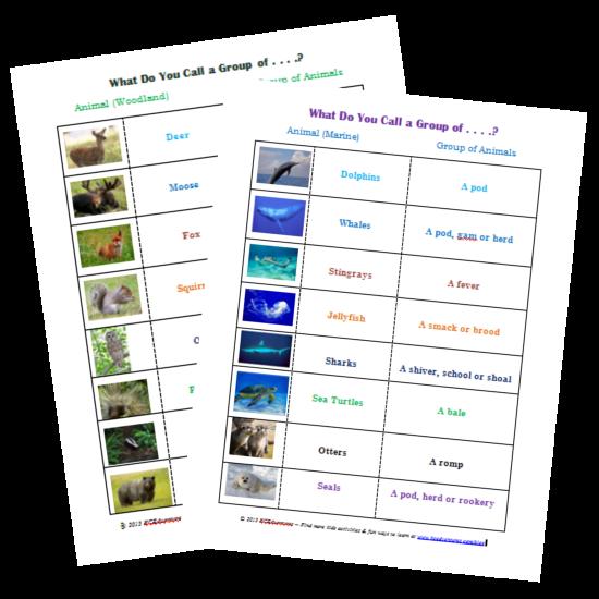 groups of animals science printables for kids science. Black Bedroom Furniture Sets. Home Design Ideas
