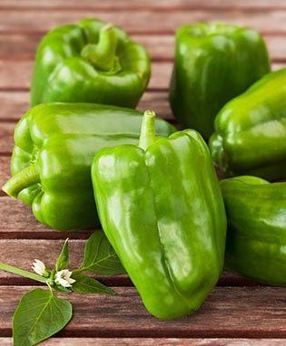 Bonnie Green Bell Pepper Classic Flavor High Yields 400 x 300