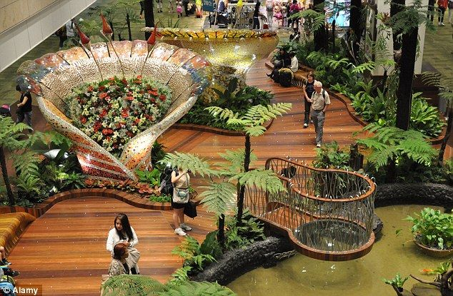 Captivating Green Space: Changi Airport Has Various Gardens And Even A Butterfly  Enclosure, To Help