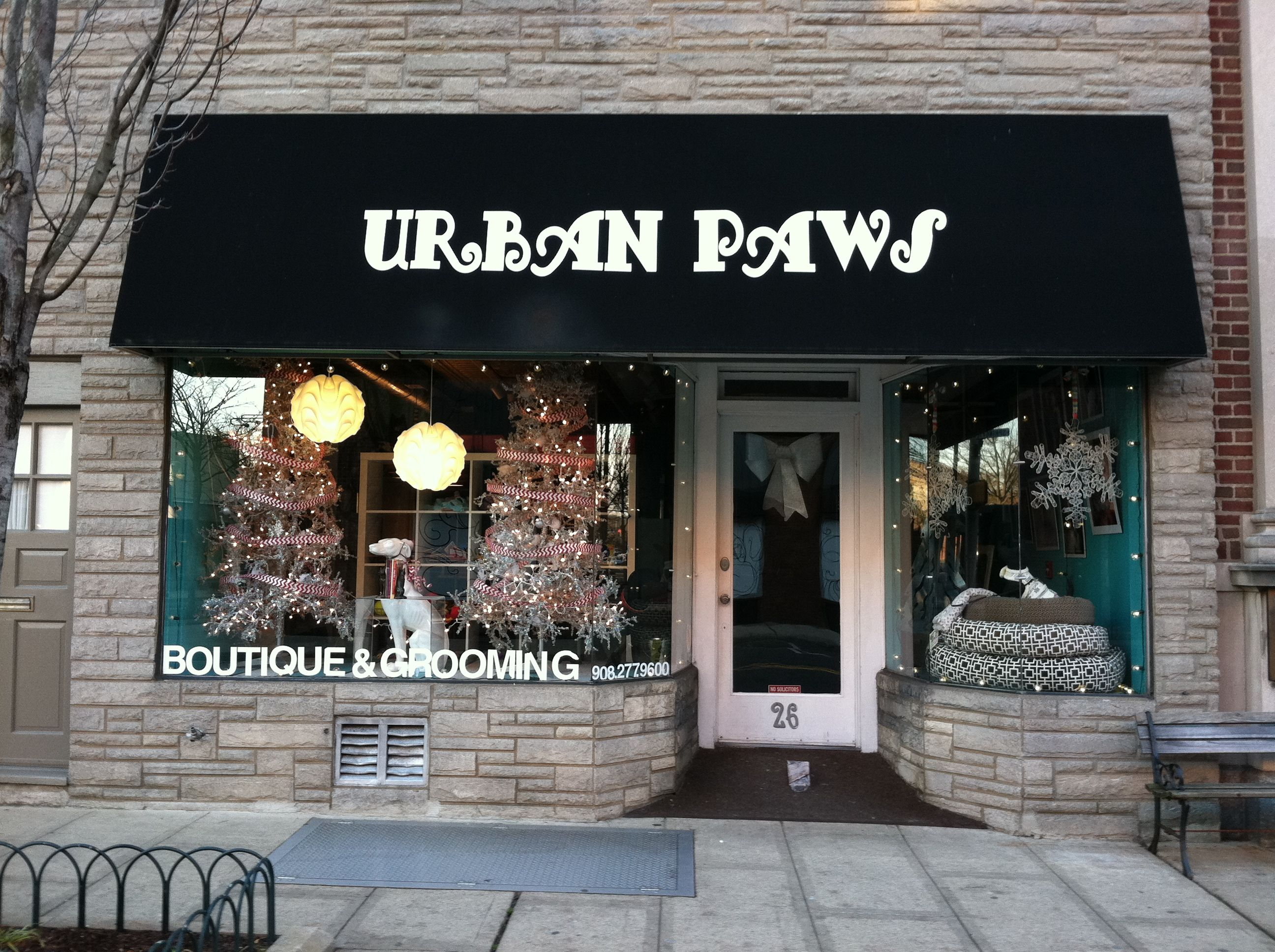 Urban Paws To Nurture Your Dog And You Doggy Daycare Grooming
