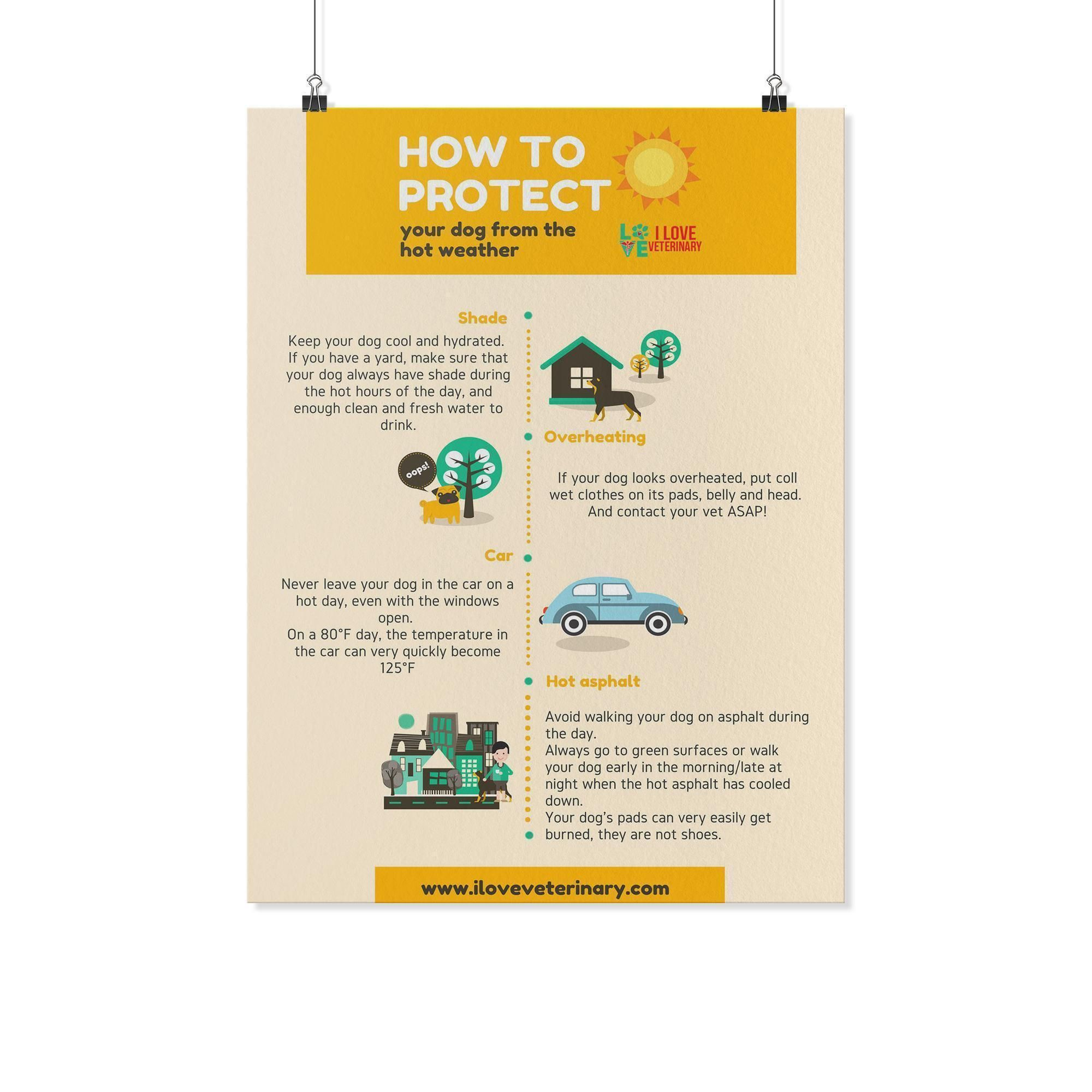 How To Protect Your Dog From The Hot Weather Poster How To Protect Yourself Your Dog How To Introduce Yourself