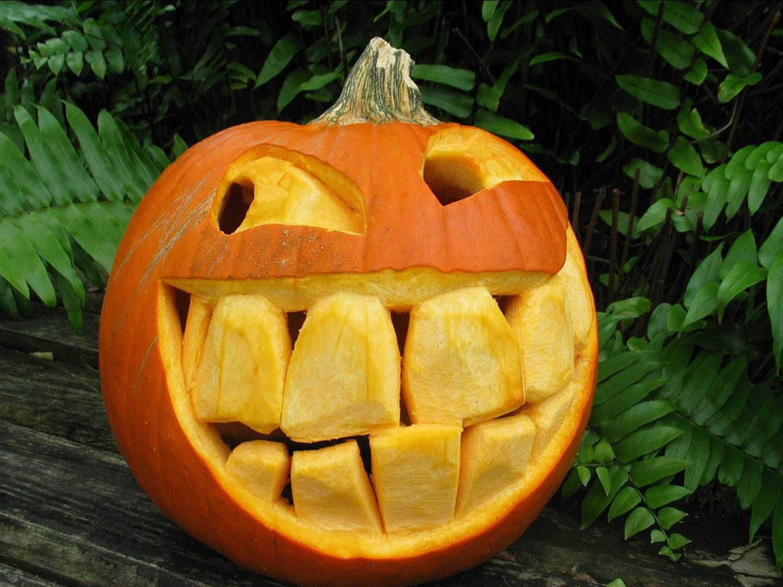 Pumpkin Carving Inspiration Board   Pumpkin carvings, Happy ...