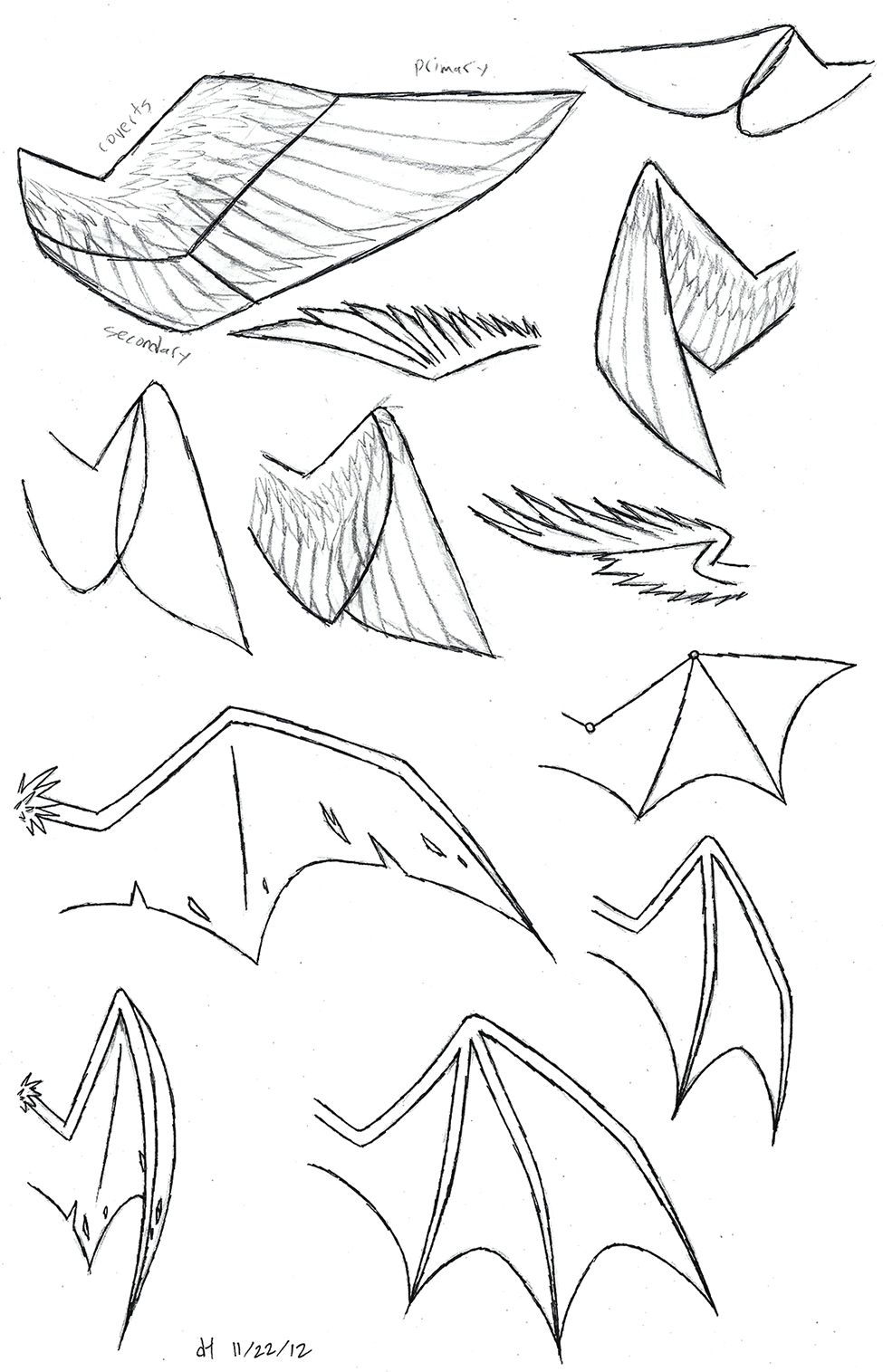 How to draw folded dragon wings wing study by vibrantechoes