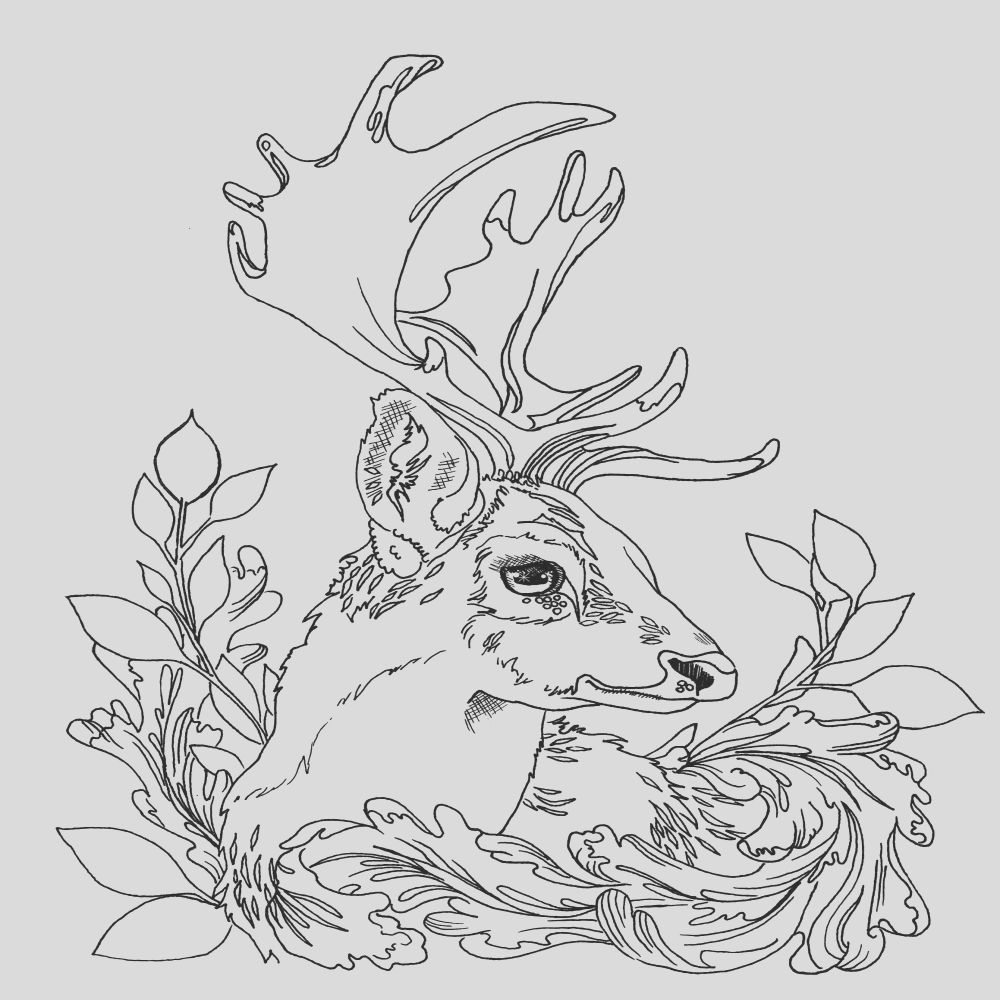 19 Inspirational Photos Of Deer Antlers Coloring Page In 2021 Deer Coloring Pages Farm Animal Coloring Pages Animal Coloring Pages