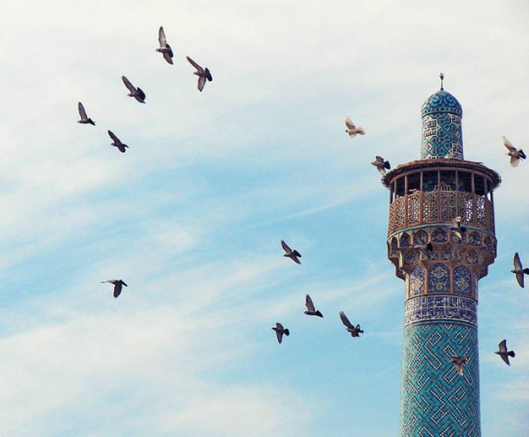 حلقي بي أيتها الطيور معك في السماء الصافية حيث دفئ الشمس حيث تحرسني النجوم ويضيئ القمر دربي جمال طا Beautiful Mosques Amazing Gifs Beautiful Quran Quotes