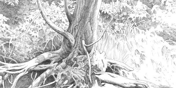 Landscape drawings in pencil can browse how to draw sketches people want to draw nature landscapes