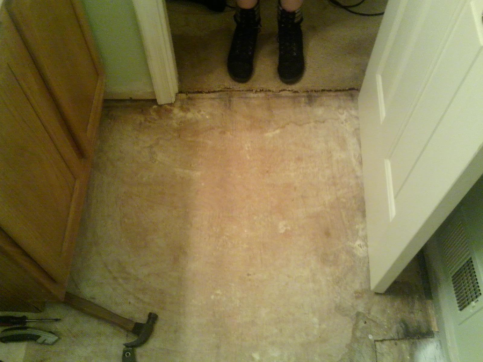 Redoing kids bathroom - repairing rotten floor board due ...
