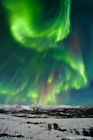 The Northern Lights are actually the result of collisions between gaseous particles in the Earth's atmosphere with charged particles released from the sun's atmosphere. Variations in colour are due to the type of gas particles that are colliding. Auroral displays appear in many colours although pale green and pink are the most common. Shades of red, yellow, green, blue, and violet have been reported.