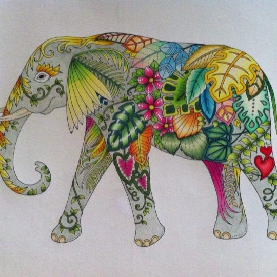 Judy Crawford 24 09 2016 Johanna Basford Colouring Gallery Basford Coloring Coloring Book Art Magical Jungle Johanna Basford