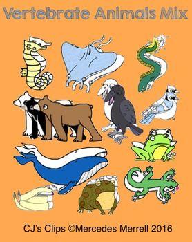 Vertebrate Animals Mix Clips Clip Art Vertebrates Animals
