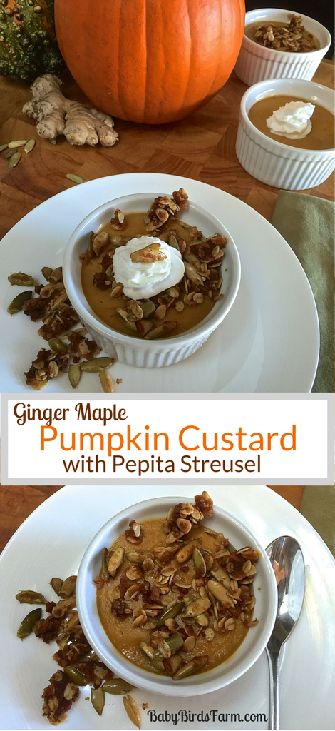 [Recipe] Ginger Maple Pumpkin Custard with Pepita Streusel (whole, unrefined ingredients, gluten-free)
