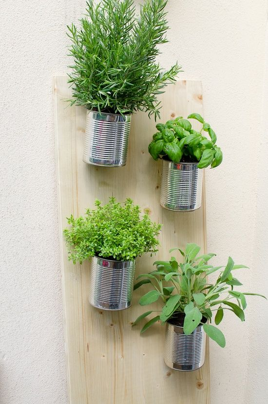 Diy vertical garden herbs in jars limited space for Limited space gardening ideas