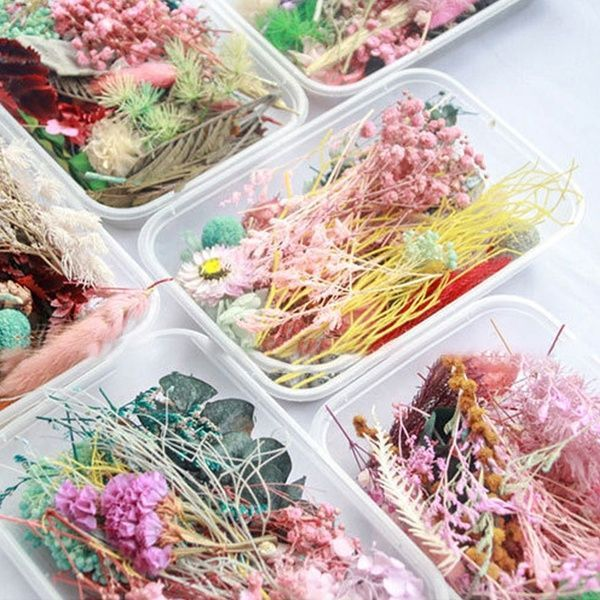 1 Box Real Dried Flower Dry Plants for Aromatherapy Candle Epoxy Resin Pendant Necklace Jewelry Making Craft DIY Accessories #aromatherapycandles Box, flowersampplant, Flores, Joyería - 15 #aromatherapycandles
