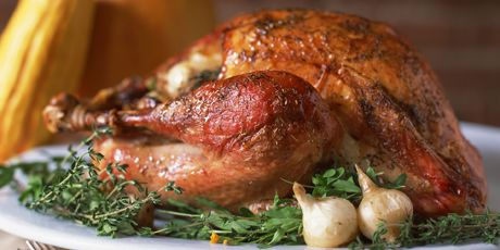 How to brine and roast a turkey recipe turkey recipes meat and oven food and drink forumfinder Images