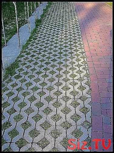 Photo of Cement driveway alternative  Driveway alternative backyard frontyard idea #alter…