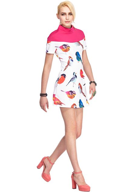 ROMWE Band Collar Colorful Bird Print Shift Dress
