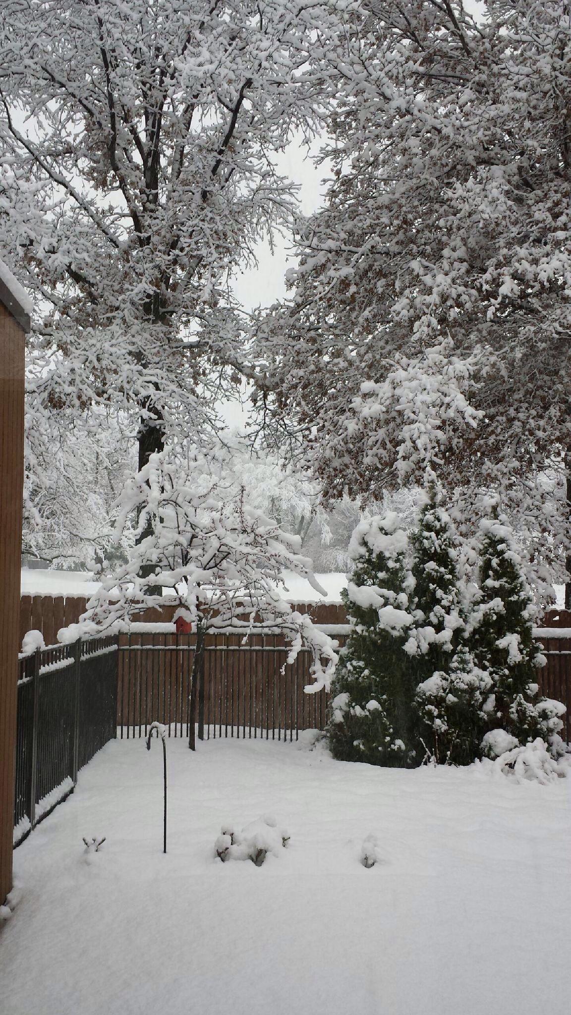 My Aunt's backyard | Outdoor, Backyard on My Garden Outdoor Living  id=47929