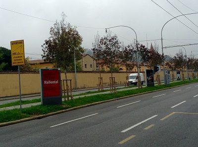 Incidenti aumentano i morti sulle strade di Bologna quasi la metà sono pedoni
