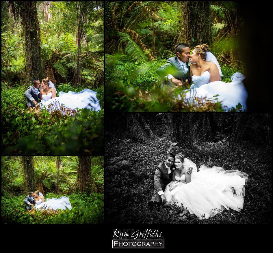 Wedding Photography at Lyrebird Falls, Kallista / Dandenong Ranges ...