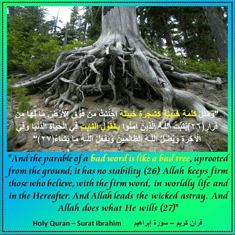 Talking Bad الكلام الخبيث Parables Verses Islam
