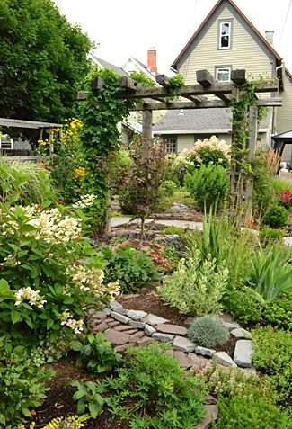 Groundcovers Are Important In Grassless Front Backyards Buffalo Niagaragardening Com In 2020 Landscape Design Backyard Garden Landscape Design