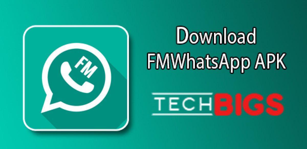 Fm Whatsapp App Apk Techbigs