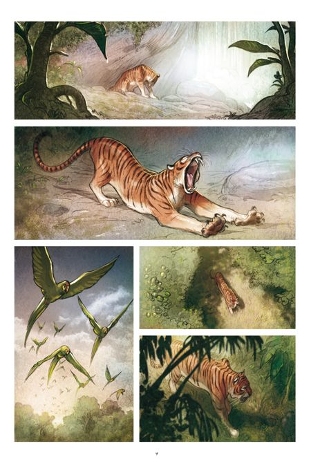 a page from 'LOVE le Tigre' by Frederic Brremaud