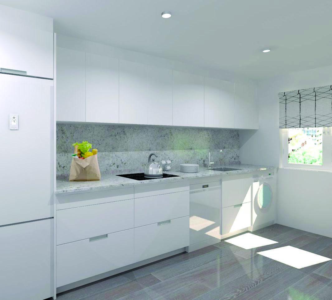 Alaska White Granite Kitchen Inspiration Design Modern White