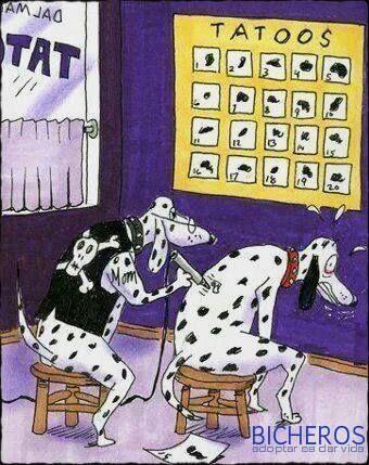 Un Poco De Humor Tatuajes Divertidos Memes De Tatuajes Caricaturas Divertidas