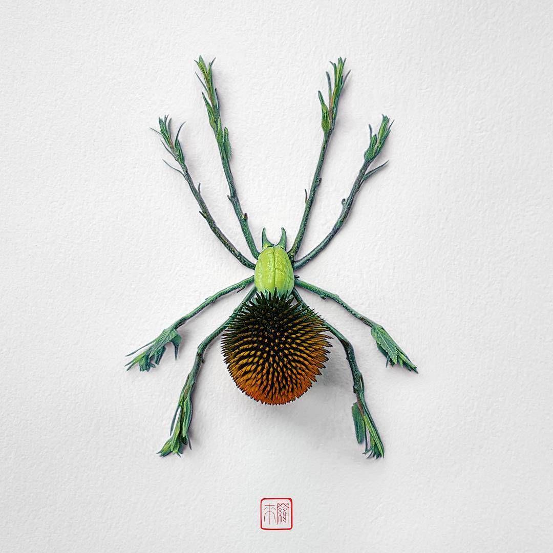 Resultado de imagen para natura insects