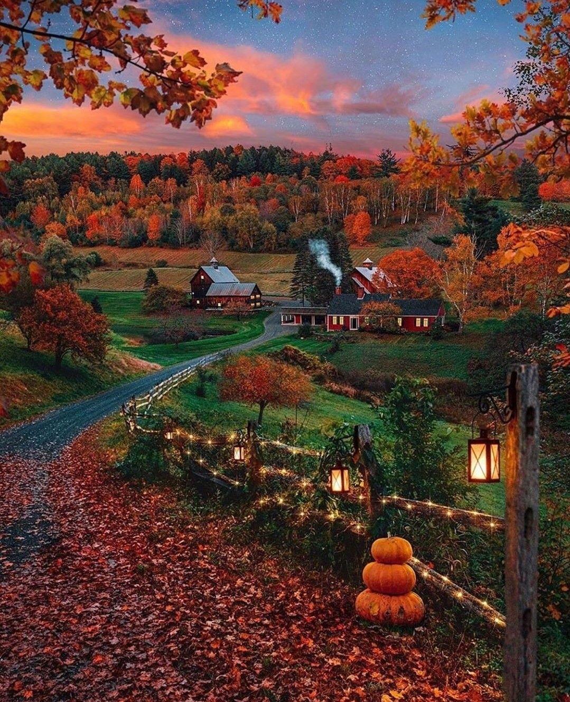carriemuza  #autumnscenery
