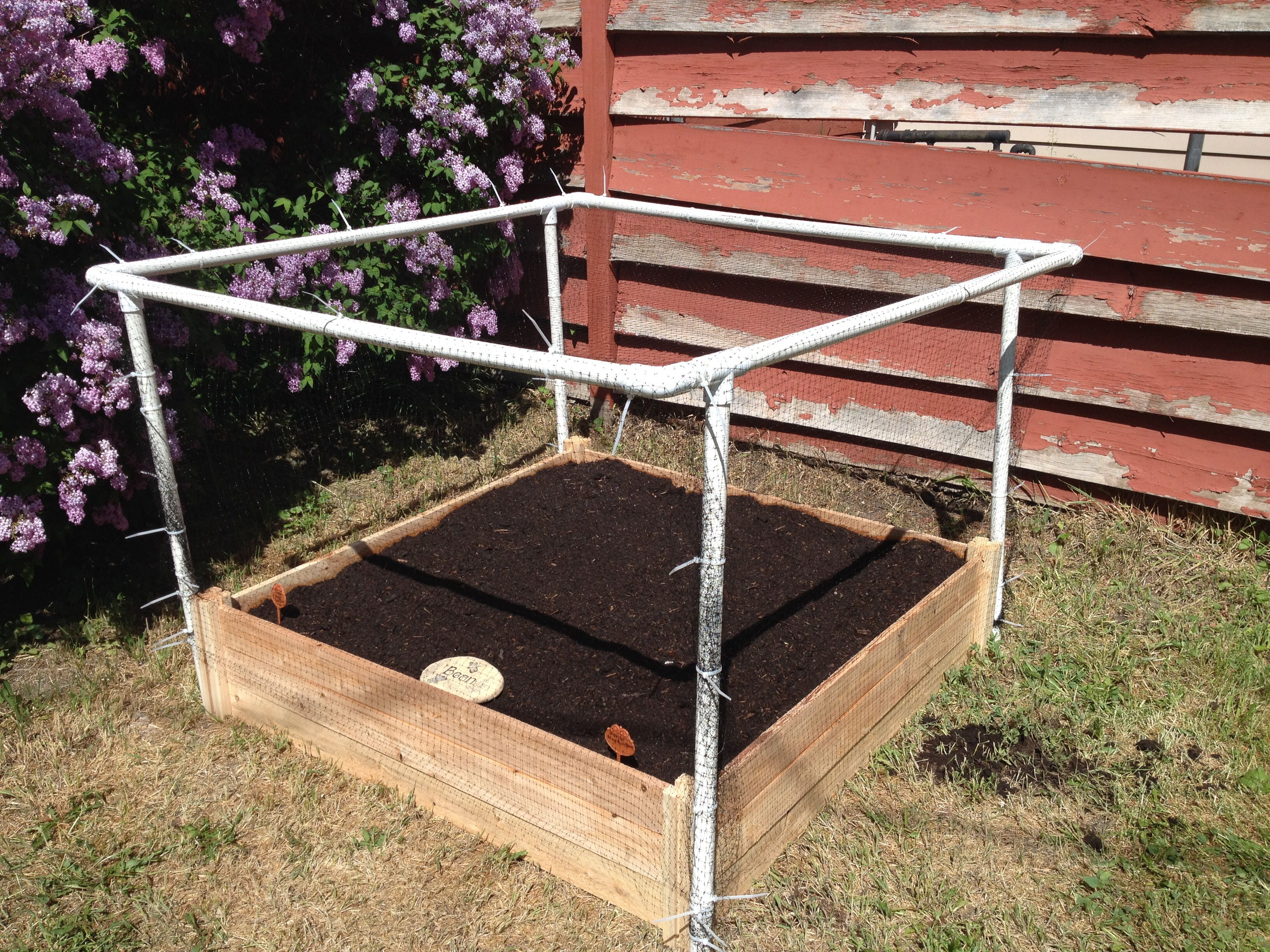 Protect your garden from cats, deer and rabbits. My DIY