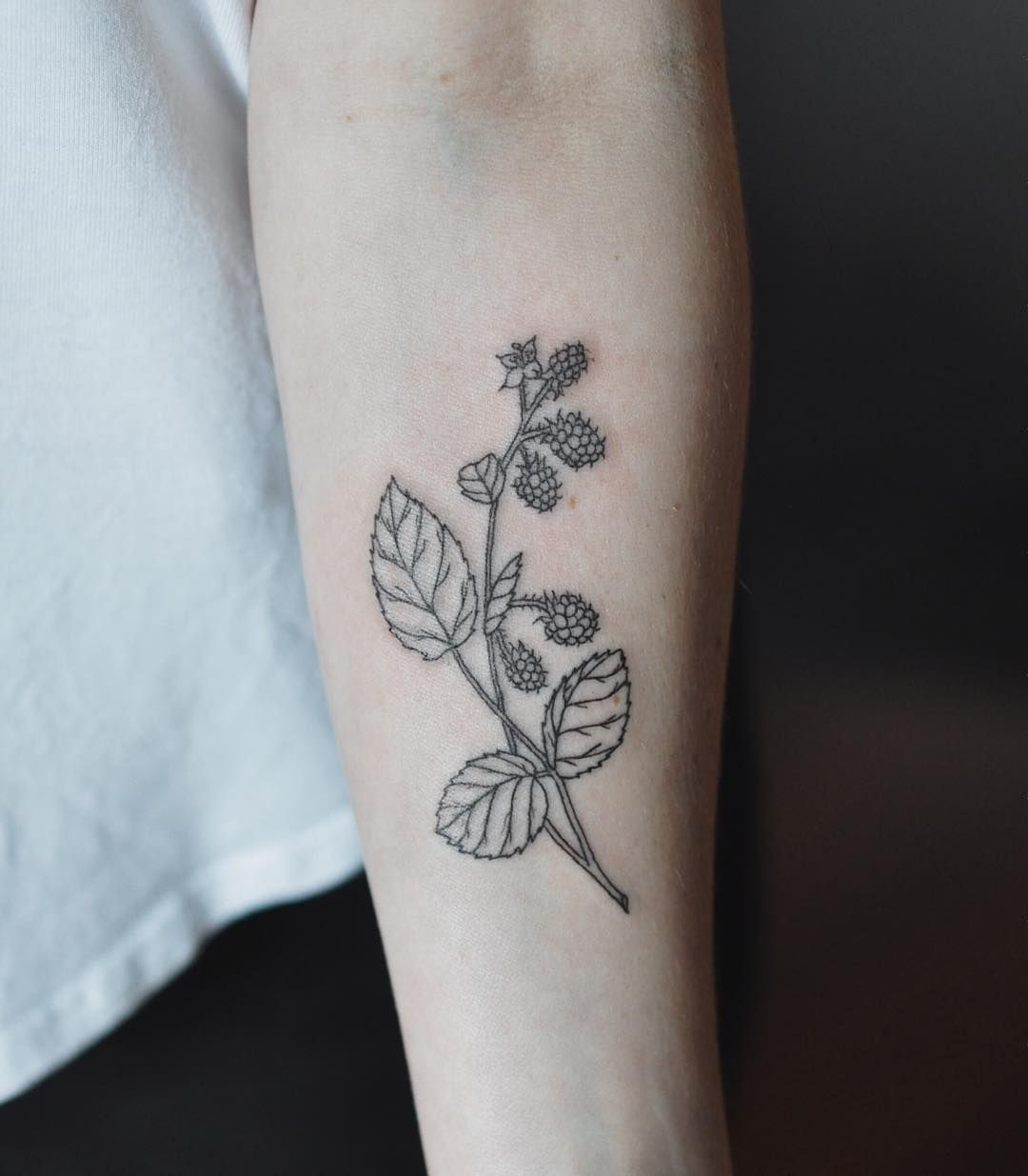 Pin By Laura Kuley On Tattoo: Raspberries For Laura.