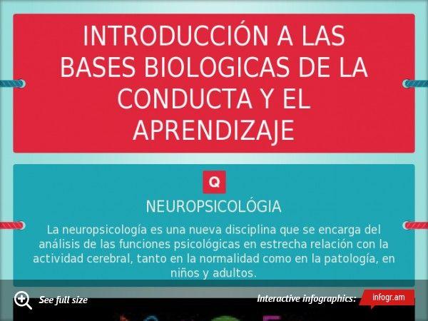Introducción A Las Bases Biologicas De La Conducta Y El Aprendizaje Neuroanatomia Upgrade To Pro Upgrade To Prothanks Lockscreen