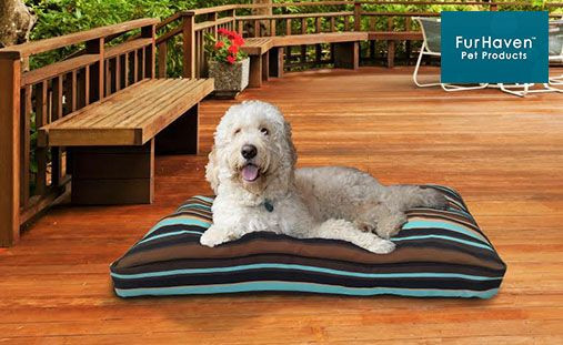 "Dog owners and pups will love this deal: ""Furhaven Outdoor Pillows"" as featured on doggyloot.com"