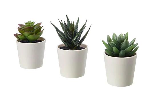 Fejka Artificial Potted Plant With Pot Indoor Outdoor Succulent Diameter Of Plant Pot 2 Package Quantity 3 Pack Ikea Artificial Potted Plants Fake Plants Decor Desk Plants