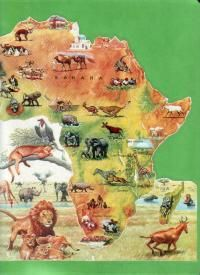 African Safari, use to review Geography questions for Africa & Egyptian Empire