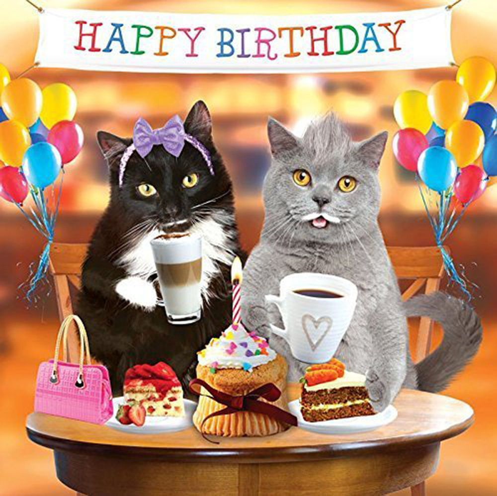 Funny Cats 3d Holographic Birthday Card Tea Party Cake